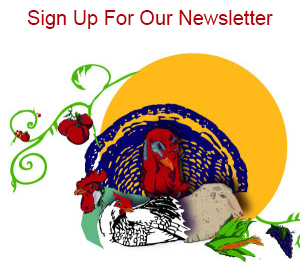 The Living Farm Newsletter