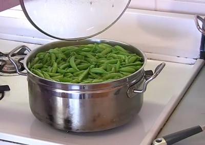 Preparing Peas for the Freezer