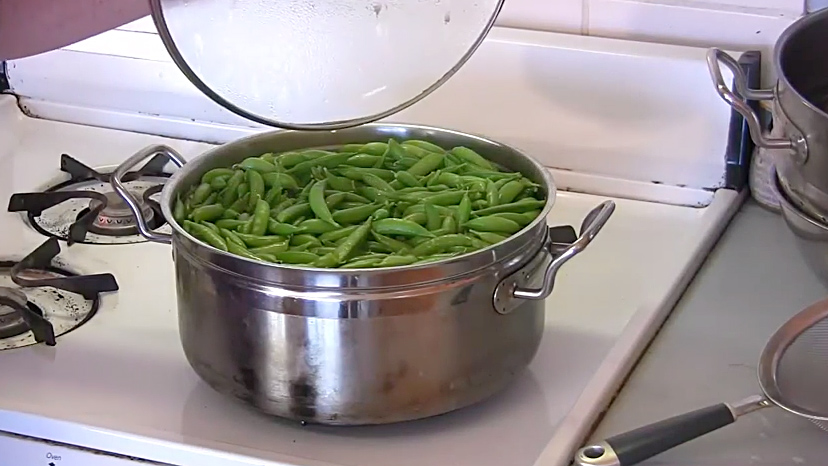 Preparing Peas for the Freezer