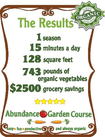 abundance-garden-results