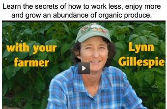 abundance-gardening-course-video