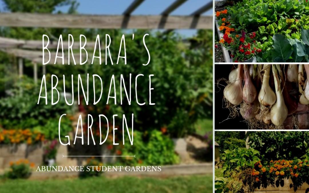 Barbara's Cinder Block Garden-  Abundance Student Garden