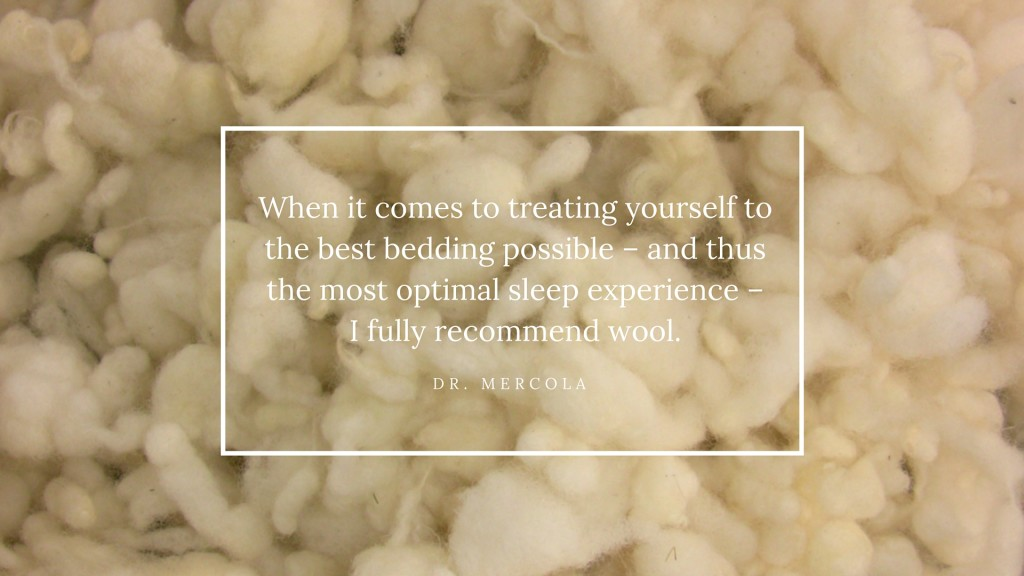 Dr Mercola Wool Pillow