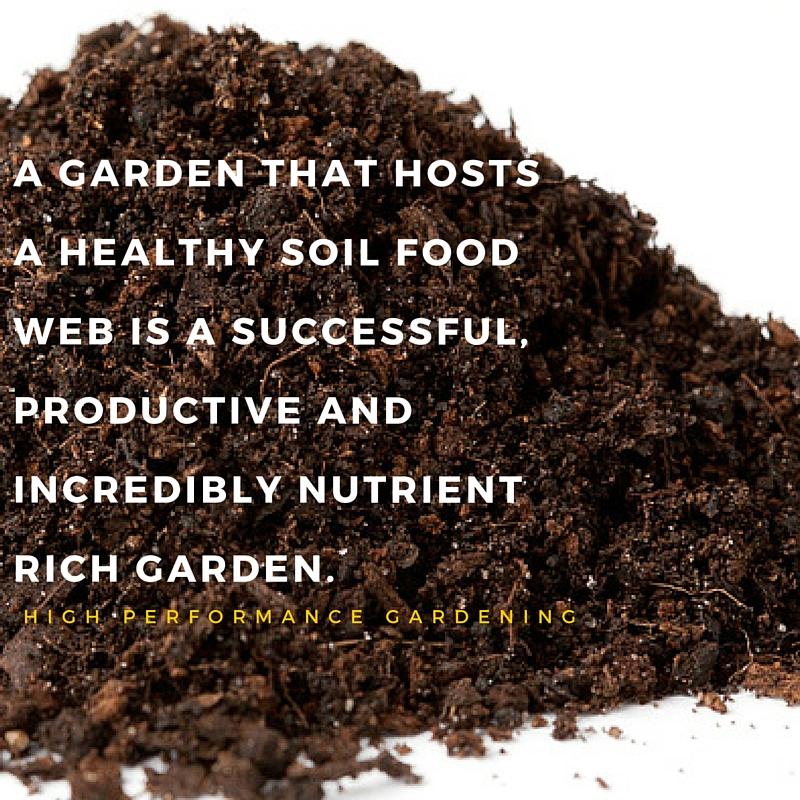 Soil Food Web Social Media