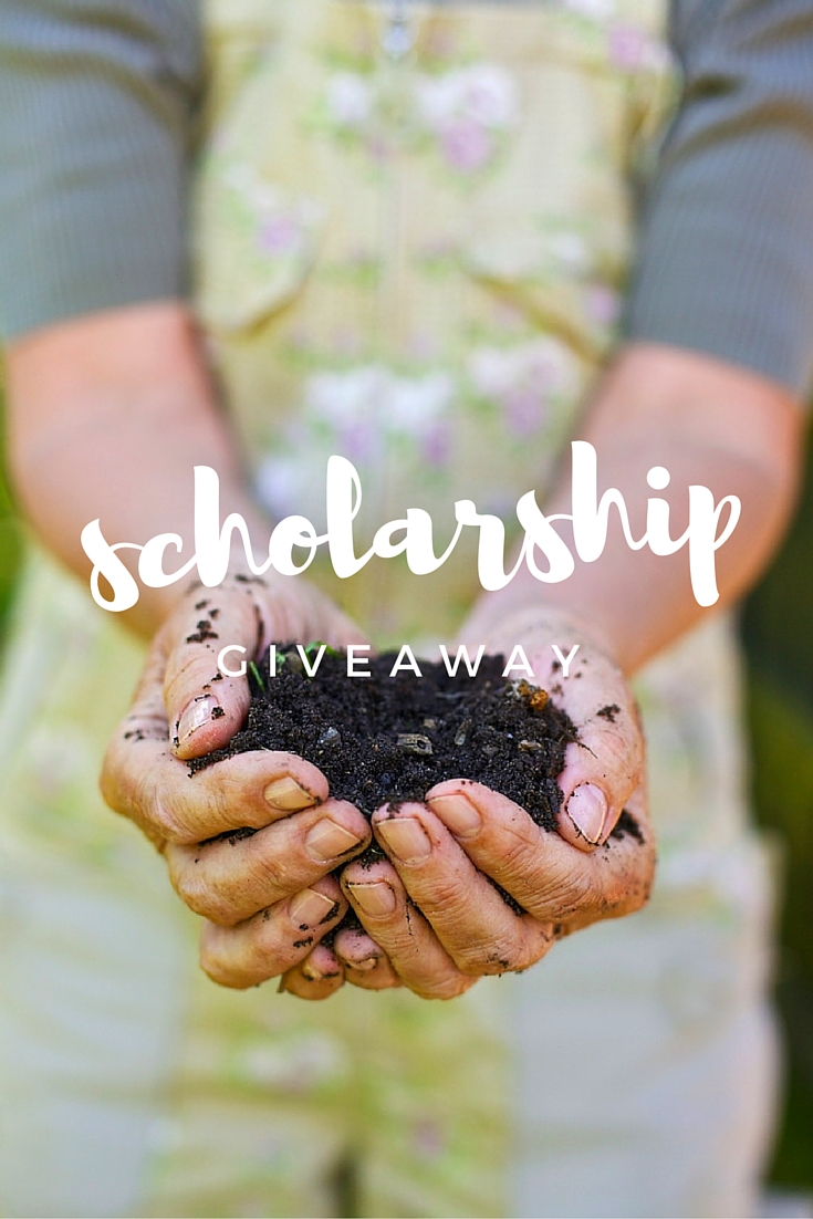 Abundance Garden Course Scholarships Pinterest