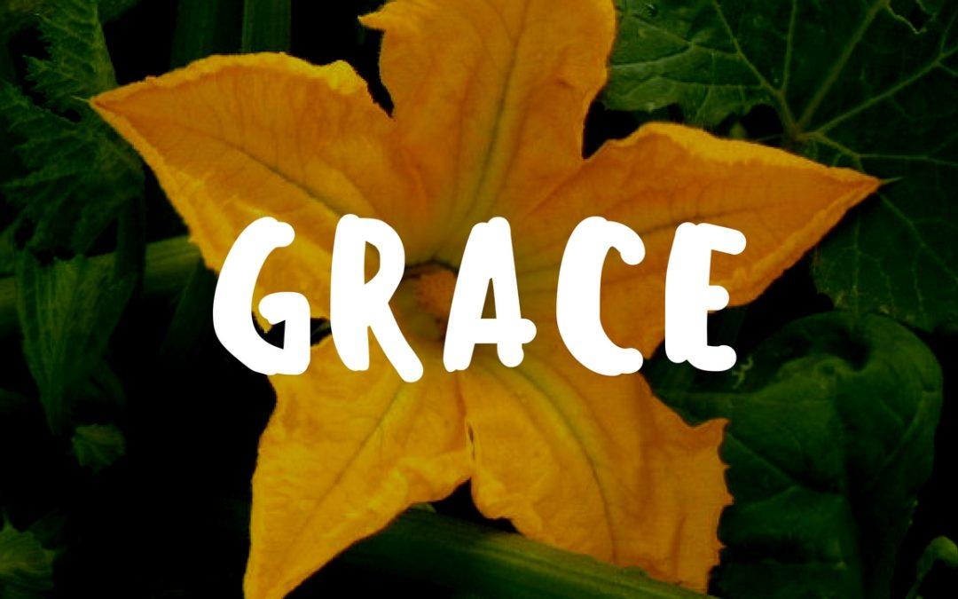 Teaching Kids Grace in the Garden – Garden Gift 10