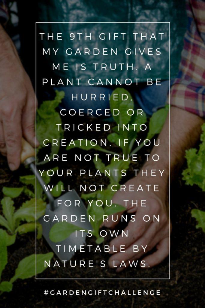 True Garden Pinterest