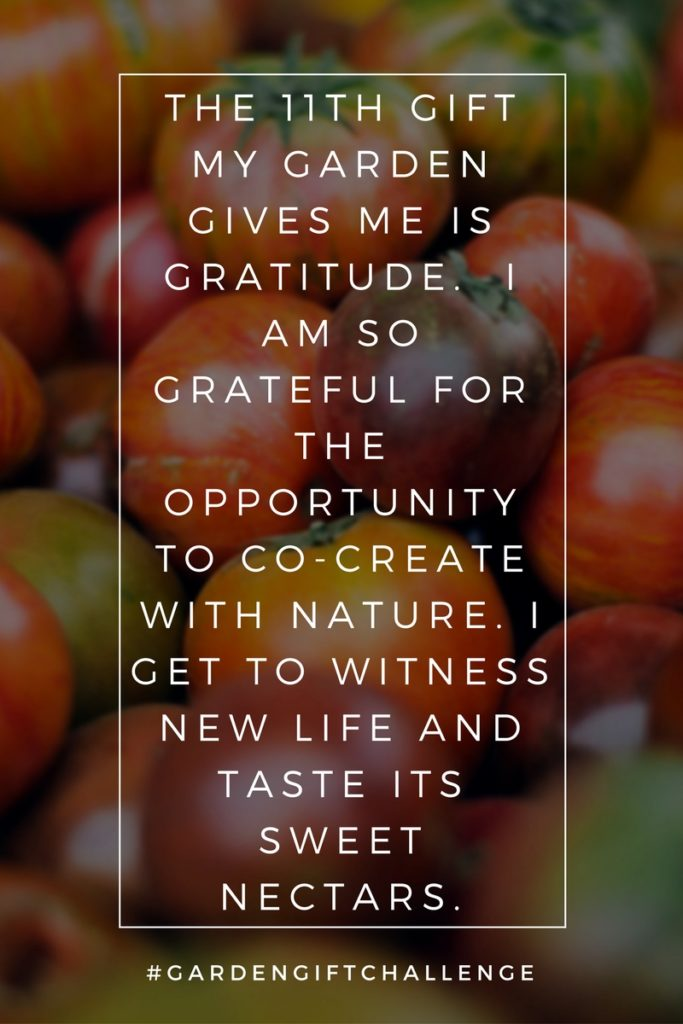 Gratitude Pinterest Image