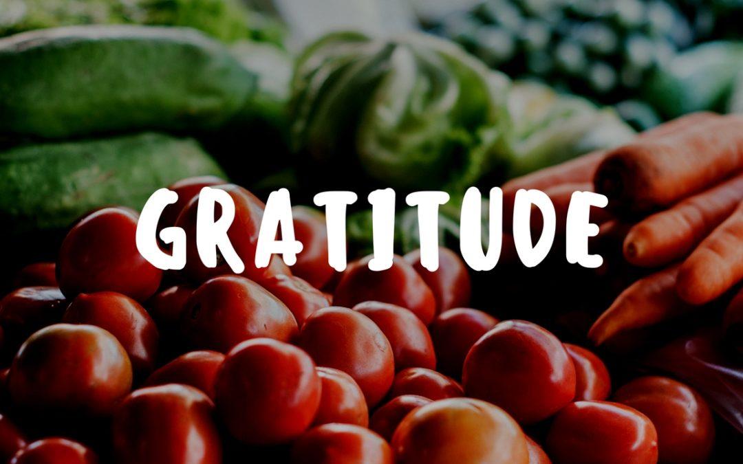 Experiencing Gratitude in the Garden