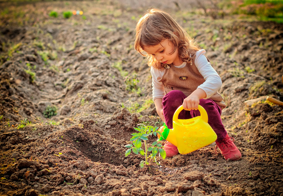Kids' Garden Plans to Try This Summer
