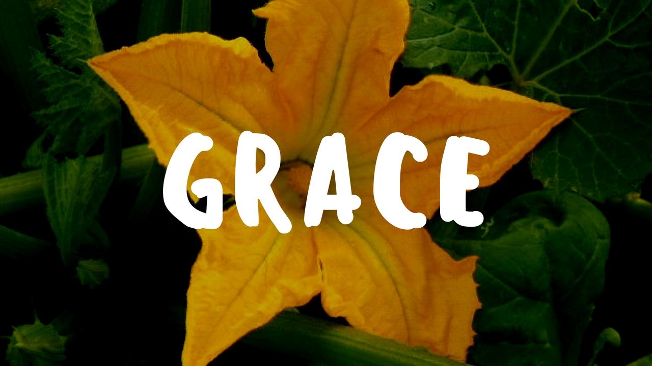 Teaching Kids Grace in the Garden - Garden Gift 10